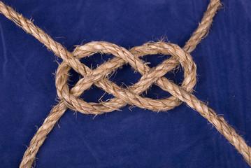 plane knot on blue background