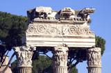 Roman Forum Ruins poster