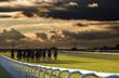Leinwanddruck Bild - horse race