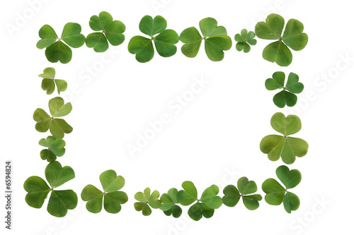 Clover boarder or Frame