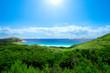 roleta: Paradise Beach