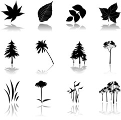 Set icons - 9. Nature. Set of twelve vector icons