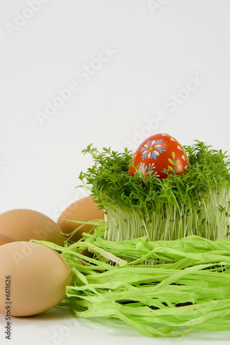 the red egg with cress