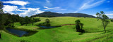 Lush Field Panorama poster