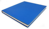 Blue Book Background Democrat Politics concept poster
