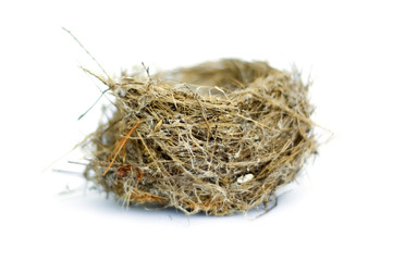 Nest on white