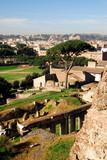Roman Forum, Rome poster