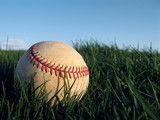 Baseball close up in Grass
