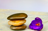 Three smooth river stones and purple flower poster