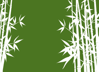 Bamboo background, vector illustration
