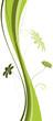 vecteur série - floral design - plante en courbes vectorielles
