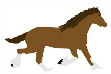 Caballo marrón