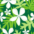 Seamless Hawaiian Fern (Lauae) Pattern