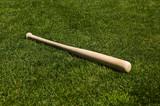 Baseball Bat - 6745608
