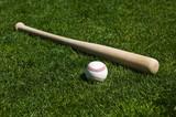 Baseball and Bat - 6745639