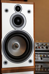 close-up of wooden hi-fi loudspeaker (shallow DOF on cone)