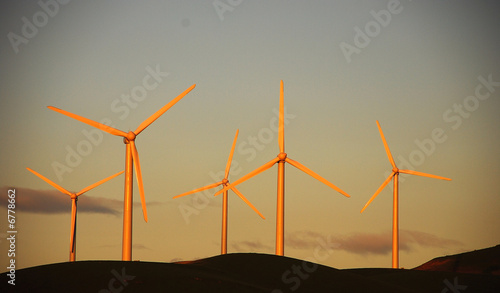 Windmill Generating Farm in Altamont Foothills