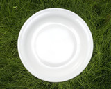 plate on grass poster
