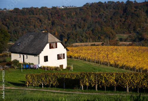 Home and vineyard in Aquitane France