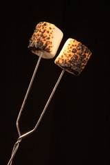 Two toasted Marshmallows