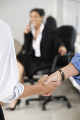 Close up of business executives shaking hands.