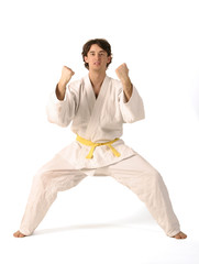 arts martiaux 97