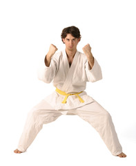 arts martiaux 98