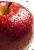 Close up red apple with droplets