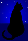 gato ao luar poster