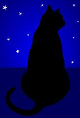 gato ao luar