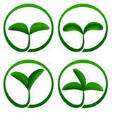 Plant ecology icon. Vector-Illustration poster