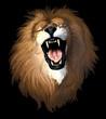 roleta: testa leone su fondo nero