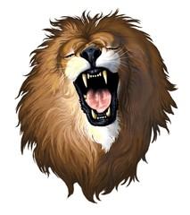 testa leone su fondo bianco