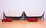zwei couch leer wartezimmer leer wohnen poster