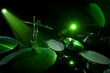 Drums in the green light