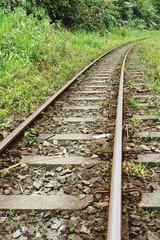 Rieles del tren en la selva