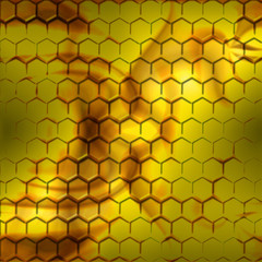 Inside the beehive