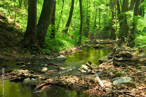 Mountain stream - 6910883