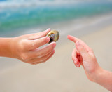 Touching Hermit Crab Shell poster