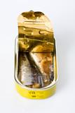 sardine boite conserve poisson ouvrir aliment mer alimentation poster