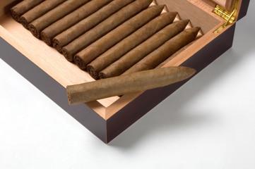 Torpedo cigar with humidor