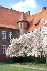 magnolie innenhof