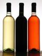Вина, шампанское, пиво, крепкие алкогольные напитки, соки, воды, сиропы.