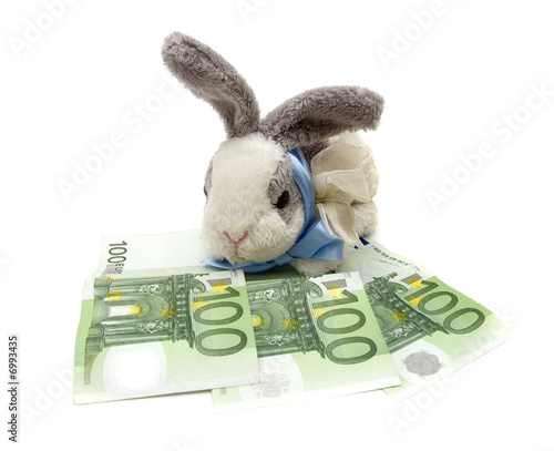 rabbit and money
