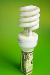 Compact fluorescent light bulb, in a dollar bill
