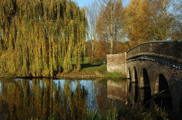 Willow, Bridge, River