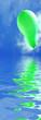 ballon vert sur la mer