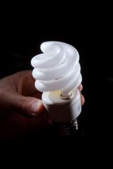 Human hand holding cfl lightbulb