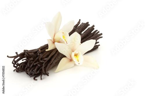 canvas print picture vanilla flowered