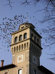 Municipio di Cervignano del Friuli - Italia